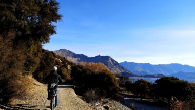 Lake Wanaka foreshore trail. Credit: LandEscape